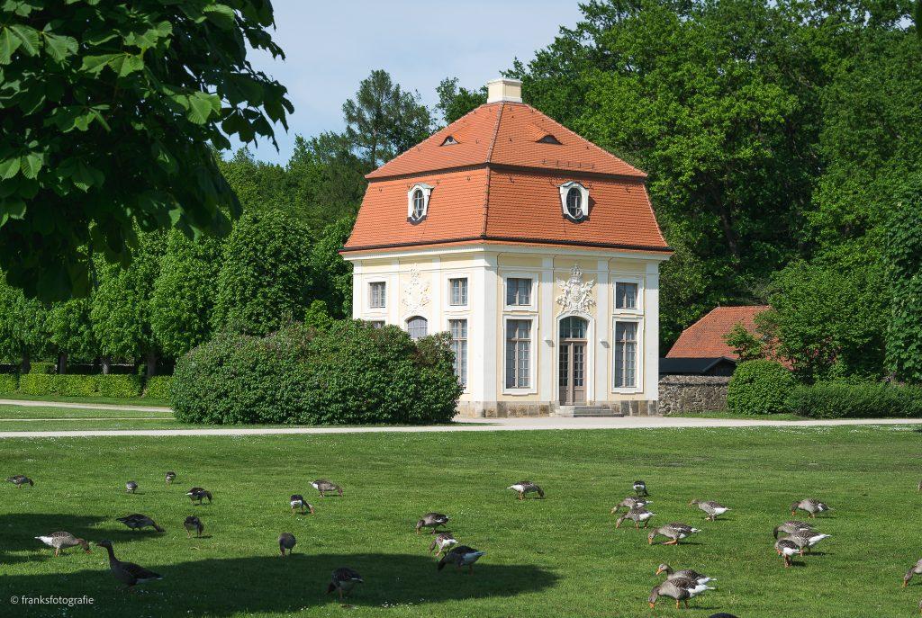 Schloss Moritzburg Schlossgarten